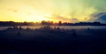 Morgennebel im Soomaa Nationalpark